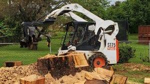 Stump Grinding Lexington KY