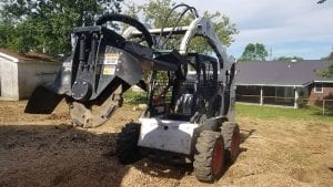 Stump Grinding Lexington KY